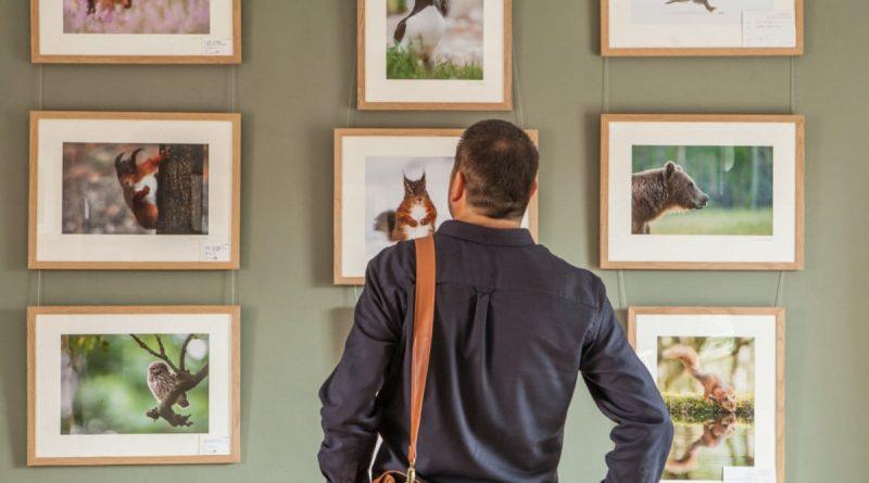 Sådan finder du penge til at lave en udstilling
