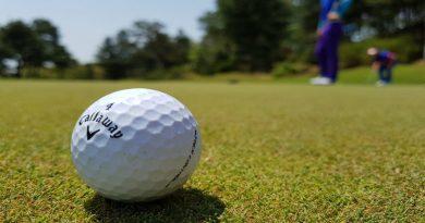 Kom til kunstudstilling hos din lokale golfklub